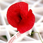 Memorial paper poppy made by Veterans image